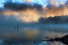 The Foggy Foggy View