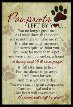 Beautiful sentiment for those who have lost a beloved pet.