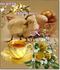 Bird, Anna, Birds