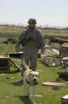 A U.S. Army Soldier and his working dog Lucky conduct a search for explosive devices in an area covered in disposed metal April 2, 2008, in Al Sinaa, Iraq. The canine team is assisting U.S. Soldiers from 1st Battalion, 8th Infantry Regiment, 3rd Brigade Combat Team, 4th Infantry Division. (U.S. Army photo by Pfc. Sarah De Boise)