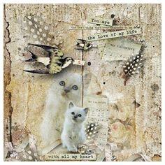 My Enchanting StoryBook by Mo Credits materials . Studio Manu ©Photo 'Hallo Kitty' by Birma Carmetinas Al. With All My Heart, Photo S, Kitty, Passion, Studio, Gallery, Kitten, Studios, Cats