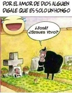 Funny Spanish Jokes, Spanish Humor, Funny Jokes, Hilarious, Funny Images, Funny Pictures, Humor Mexicano, Funny Phrases, Strong Quotes