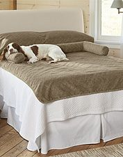 This bed protector keeps dog hair and dirt off your bedding while giving him bolstered support.