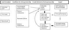 Entrepreneurial Economics and Its Relevance to India