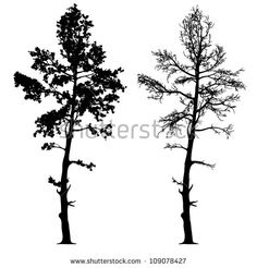stock-vector-vector-drawing-of-the-tree-detailed-vector-109078427.jpg (450×470)