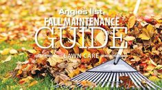 Angie's List Fall Maintenance Guide - Lawn Care