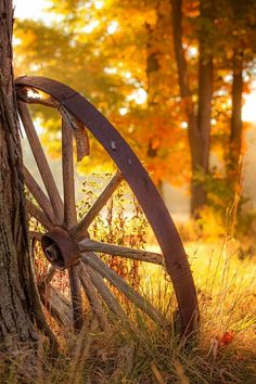 Wagon wheel and autumn leaves Fall Pictures, Pretty Pictures, Fall Photos, Autumn Day, Autumn Leaves, Autumn Morning, Autumn Scenes, Country Scenes, Jolie Photo