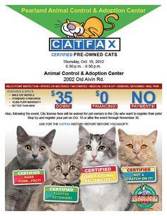 Great Kitten Adoption Poster!   Pet Adoption Marketing ...  Pearland