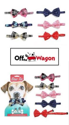 Funny gifts for dog lovers Dog Lover Gifts, Dog Lovers, Cool Gifts, Unique Gifts, Funny Gifts For Men, Funny Gags, Gag Gifts, Cute Dogs, Your Dog