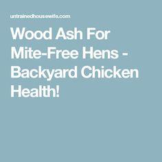 Wood Ash For Mite-Free Hens - Backyard Chicken Health!