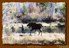 Ancestors Live Here: Wordless Wednesday -- Blue Pond Spring, St. Charles, Idaho