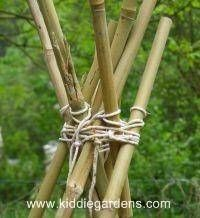 tieing bamboo poles together