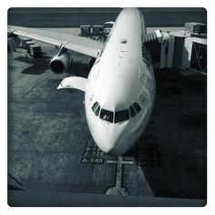 En attendant le départ