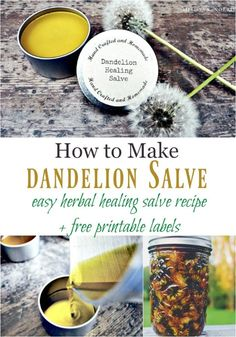 How to Make Dandelion Salve #herbal #homemadesalve #dandelion