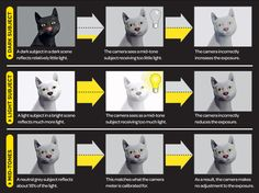 Camera metering and exposure explained