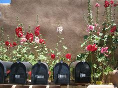 Mailboxes in the Summer in Santa Fe