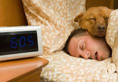 http://www.healthandmore.net/sleeping-too-much-can-also-damage-health/