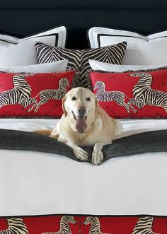 Show your wild side with the Scalamandre Bedding Collection that features a stunning mixture of animal and plaid prints and bright whites for a crisp finishing touch to your master suite.