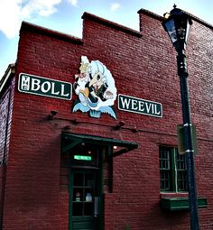 The Boll Weevil in Downtown Augusta, GA