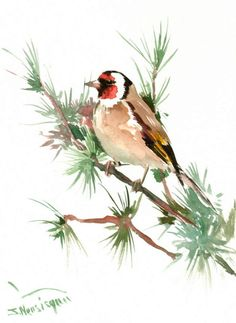 European Goldfinch Original watercolor painting 12 by ORIGINALONLY