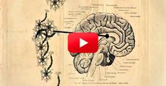 Amazing! The Results of the Study at 1:22 Will Blow Your Mind! | The Alzheimer's Site Blog