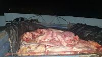 Noticias de Cúcuta: Aprehendidas cerca de tres toneladas de carne bovi...