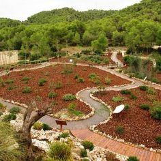Paraje Natural Municipal Les Rodanes. Villamarxant