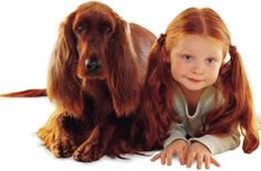 Here's another cute post with children and pets… Here are some pets and children that look alike. Dogs And Kids, Animals For Kids, Cute Animals, Big Dogs, Charles Darwin, Irish Setter, Look Alike, Dog Owners, Pets