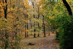 1000 Images About Beautiful Brookdale Park On Pinterest Parks Park In And The Fall