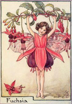 fuchsia fairy by  Cicely Mary Baker
