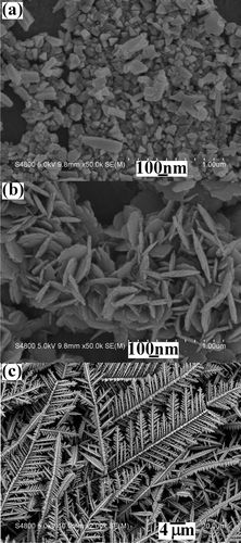 SEM images of the products prepared from the various systems: (a) 0.5 mmol of Pb(NO3)2 + 1 mmol of Na2TeO3 + 1.0 g of citric acid, (b) 0.5 mmol of Pb(NO3)2 + 1 mmol of Na2TeO3 + 1.0 g of EDTA-2Na and (c) 0.5 mmol of Pb(NO3)2 + 1 mmol of Na2TeO3 + 1.0 g of tartaric acid + proper amounts of HNO3.     Credit goes to Yonghong Ni, Yongmei Zhang, and Jianming Hong    Potentiostatic Electrodeposition Route for Quick Synthesis of Featherlike PbTe Dendrites: Influencing Factors and Shape Evolution