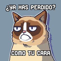 He conseguido 40 puntos en Grumpy Cat: es el peor juego #grumpycat http://smarturl.it/grumpycat
