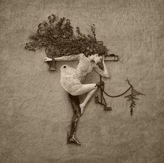 Photographs :: Flora :: Jennifer Hudson Fine Art