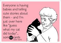 """Free, Pets Ecard: Everyone is having babies and telling cute stories about them - and I'm just over here like """"guess what my cat did today""""..."""