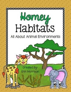A unit all about animal environments