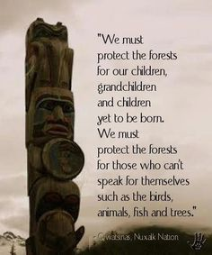Protect our Earth, protect the forests - leave them alone, stop cutting trees!!!!