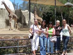 Students at the San Diego Zoo. Study English in San Diego, California, USA at the English language school - LSI Language Studies International San Diego. Regular 20 hour and Intensive 30 hour courses available. Choose from home stays with a host family, bed and breakfast or half board and student apartment residence accommodation.