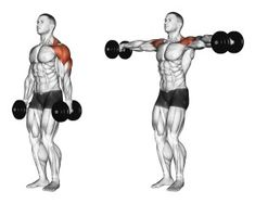 Illustration about Lifting dumbbell in hand. Exercising for bodybuilding. Target muscles are marked in red. Illustration of target, lifting, bodybuilding - 43667061 Push Day Workout, Gym Workout Tips, Dumbbell Workout, Workout Challenge, Workout Routines, Fitness Routines, Fitness Exercises, Fitness Gym, Muscle Fitness