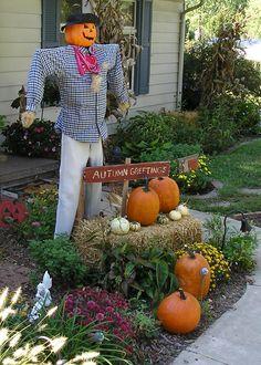 .scarecrow
