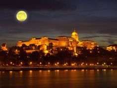 Buda Castle in Hungary Places To Travel, Places To Go, Capital Of Hungary, Buda Castle, Heart Of Europe, European Travel, European Trips, Central Europe, Beautiful Architecture