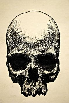 skull.