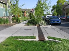 Image showing a Natural Drainage System (NDS) applied to a streetscape in the USA.