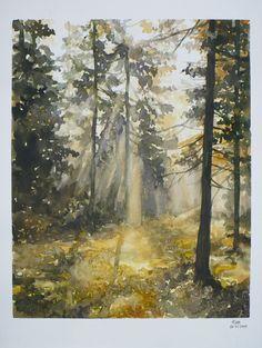 forest of light by Kasiarzynka on DeviantArt