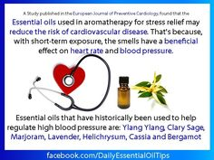 Daily Essential Oil Tips