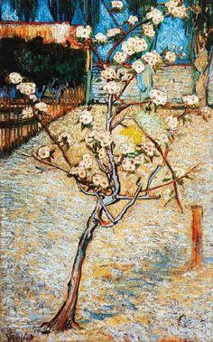 Vincent Van Gogh - Post Impressionism - Arles - Poirier en Fleurs