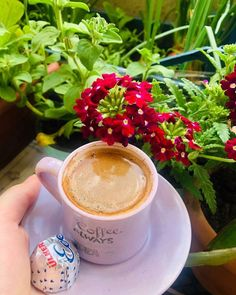"""190 Beğenme, 2 Yorum - Instagram'da @kahvekonseptimiz: """"Bu güzel sunum için çok teşekkür ederiz 💕 . . . . . . . . . . . ⬇️⬇️⬇️⬇️⬇️⬇️⬇️⬇️⬇️ Sunum…"""" Latte, Ice, Drinks, Instagram, Food, Drinking, Beverages, Eten, Drink"""