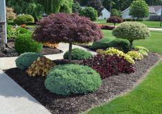 Bäume-Vorhof-Blumenbeete-Fußweg