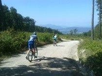 Meine besten Links zum Thema Radfahren Mountain Biking, Bicycle, Bike Rides, Bike, Bicycle Kick, Bicycles