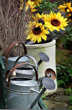country garden watering cans