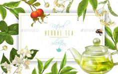 Herbal Tea Frame - Food #Objects Download here: https://graphicriver.net/item/herbal-tea-frame/19706370?ref=alena994